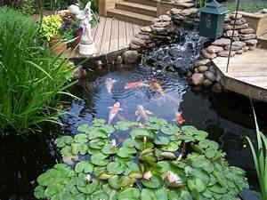 Raised formal backyard koi pond for Back yard koi pond
