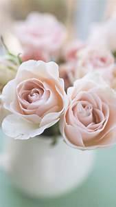 Light Pink Flower Iphone Wallpaper - 4k Wallpapers