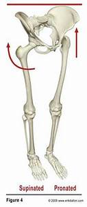 Pin On Si Joint  Sciatica  Low Back  Hips