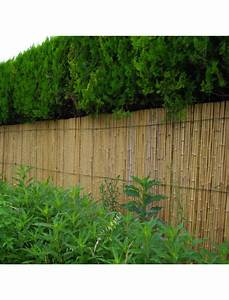 Bambou Brise Vue : cloture bambou brise vue v g tal chromeleon ~ Premium-room.com Idées de Décoration