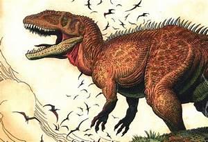 The gallery for --> Planet Dinosaur Carcharodontosaurus