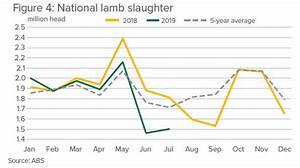35 Lamb To The Slaughter Plot Diagram
