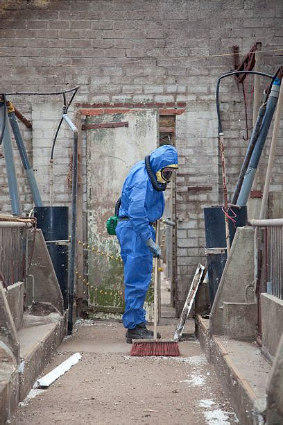 asbestos stock  pictures royalty  images istock