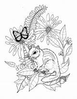 Coloring Adult Chipmunk Needle Punch Butterfly sketch template