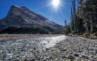 scarica sfondi bow lake lago  montagna rocce estate