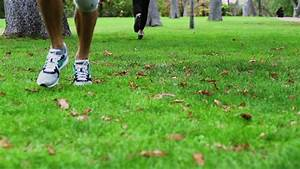 People Running In The Park In Trainers, Slow Motion Shot ...