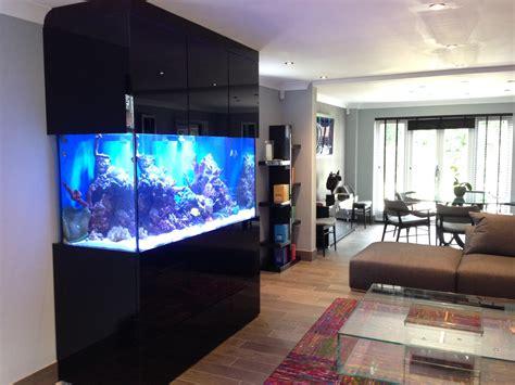 custom designer aquarium  derbyshire oceanlife aquatics