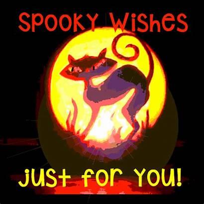Halloween Spooky Wishes Jack Lantern Pumpkins Greetings