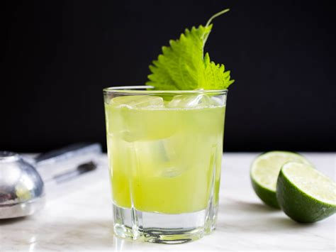 drink recipe mint drink recipe non alcoholic