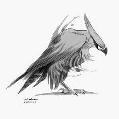 creature design bird  prey images character