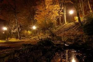 Licht In Der Laterne : licht der laterne ist in einem teich im herbst park in der nacht wieder stockfoto colourbox ~ Watch28wear.com Haus und Dekorationen