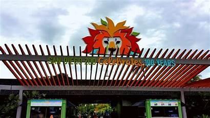 Diego San Zoo Visit Safari Things Park