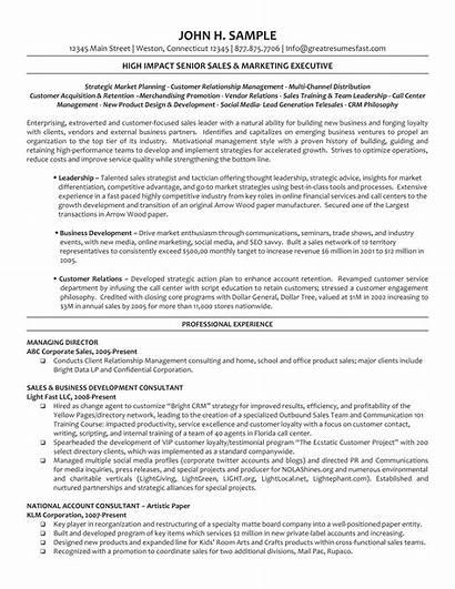 Resume Director Executive Board Managing Template Directors