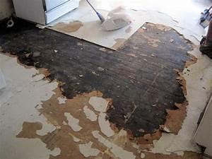 Ideas of asbestos floor tile removal design john for How to cover asbestos floor tiles
