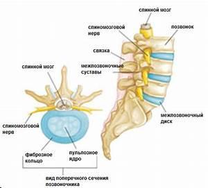 Остеохондроз поясничного отдела позвоночника лечение гимнастика