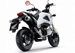 Petite Moto Honda : honda msx 125 le monkey est de retour moto journal ~ Mglfilm.com Idées de Décoration