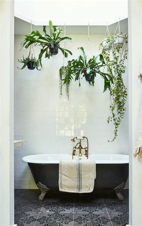 Bathroom with hanging plants and skylight Boudoir