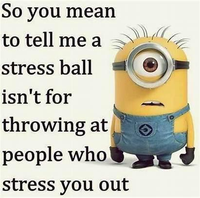 Minion Memes Funnier Even Funny Surely Right