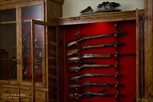 Single Gun Cabinet Plans Plans DIY small wood carving