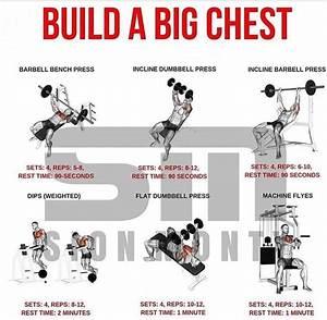Ultimate Infotek  Best Chest Workout For Mass