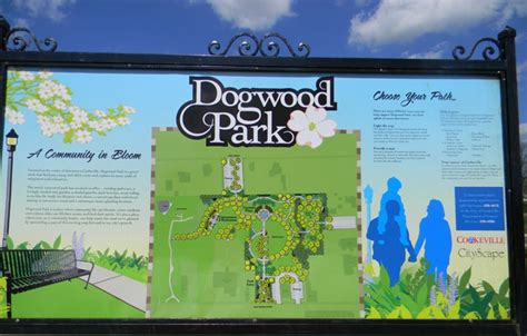 things to do in cookeville visit dogwood park