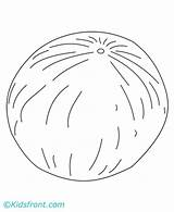 Melon Coloring Pages Cantaloupe Template Designlooter Drawings 440px 85kb sketch template