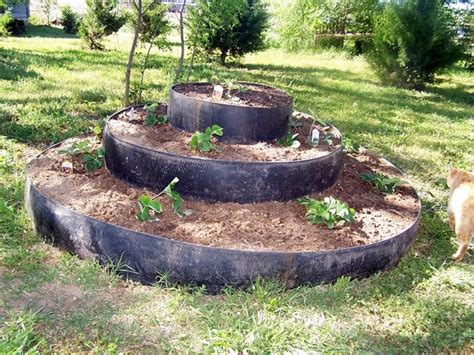 1000+ Images About Gardening Ideas On Pinterest