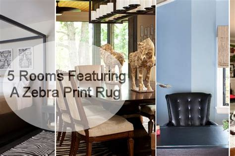 5 Rooms Featuring A Zebra Print Rug Decorfldefensivedrivingschoolcom - Ds-2410-sofa-by-peter-maly-and-birgit-hoffmann