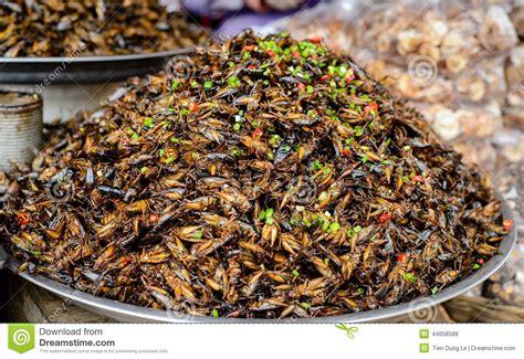 insectes cuisine nourriture d 39 insectes chez le cambodge photo stock image