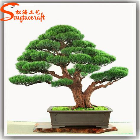 2015 prices japanese bonsai trees and plants plastic