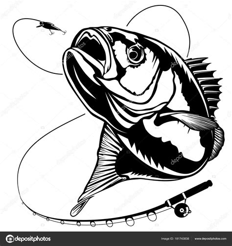 Bass Clipart New Bass Fishing With Rod Stock Vector 169 Lioriki 181743838