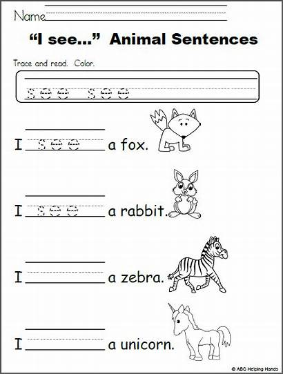 Sentences Sight Worksheet Kindergarten Animal Words Writing