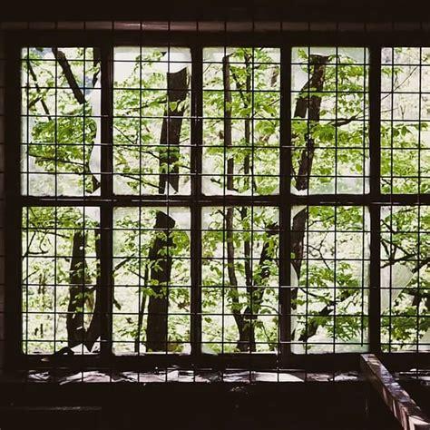 Fenster Sichtschutz Sprossenfenster by Kunststofffenster G 252 Nstig Kaufen Bestellen