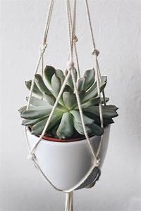 Suspension Pour Plante Interieur : diy suspension macram pour plante moodfeather ~ Teatrodelosmanantiales.com Idées de Décoration