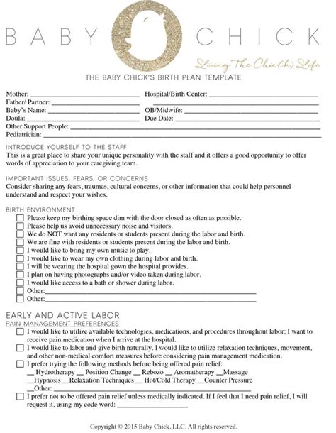 Planned C Section Birth Plan Template by 10 Best Birth Plans Images On Birthing Plan