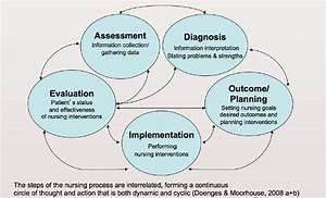 The Nursing Process