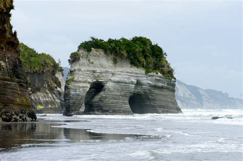 elephant rock taranaki access    tide