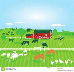 Farm With Animals Stock Vector