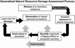 General Flowchart Of Natural Resource Damage