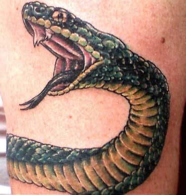 snakes tattoo  biceps  triceps