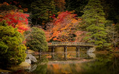 jeffrey friedls blog revisiting kyotos fall colors