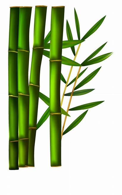 Bamboo Clip Clipart Background Transparent Silhouette Sushi