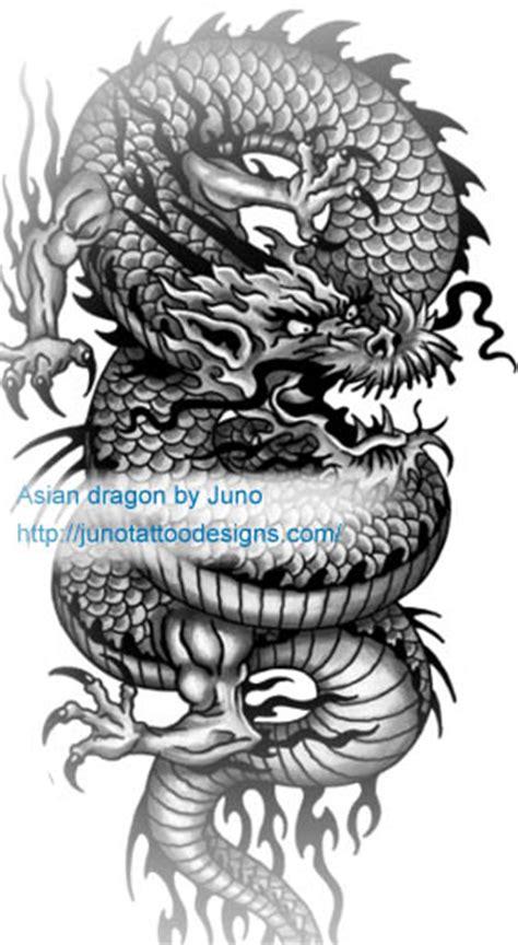 dragon tattoos create  custom dragon tattoo