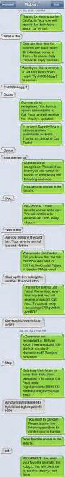 cat facts prank cat facts masterful texting prank haha if only i could