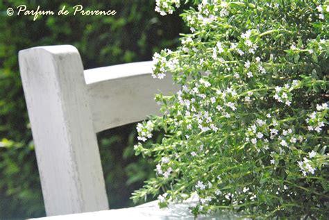 primavera in giardino parfum de provence primavera in giardino tra le aromatiche