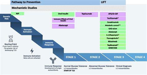 type  diabetes trialnet  multifaceted approach