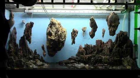 allestimento acquario fantasy aquarium setup aquascape