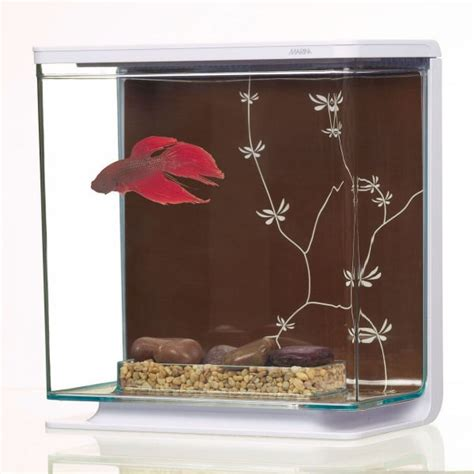 marina betta kit gm contemporain aquarium pour poisson