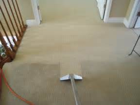 How Much To Get New Carpet by Carpet Steam Cleaning Really Cheap Bond Cleaning