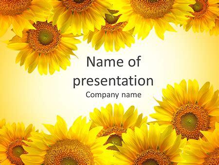 sunflower powerpoint template rebocinfo